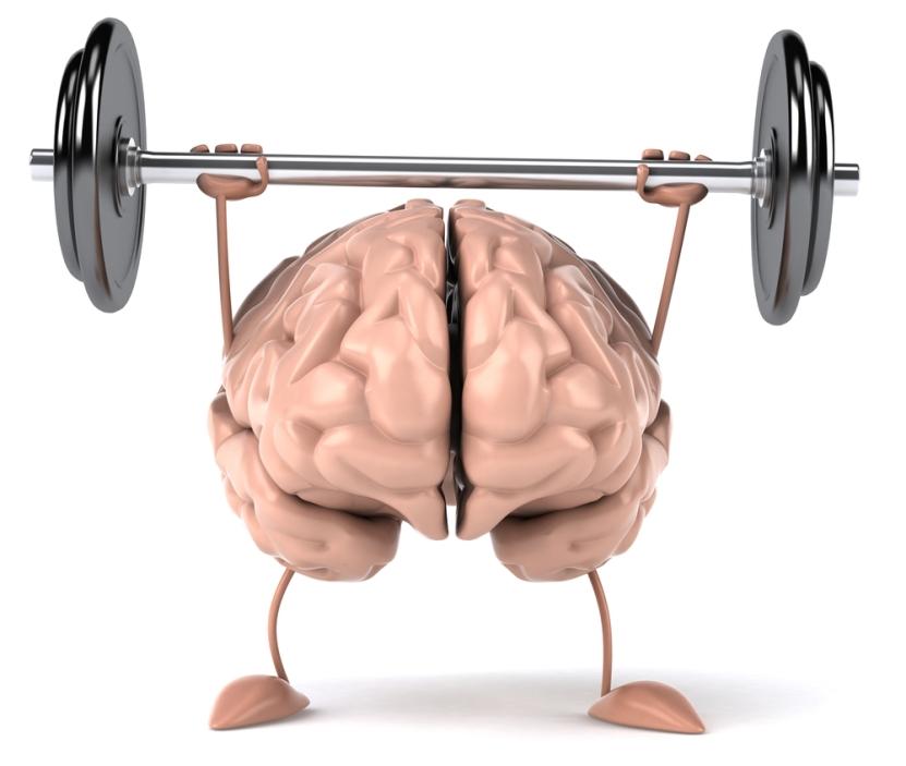 brainfitness1