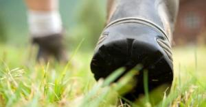 hiking-boots-walking-istock