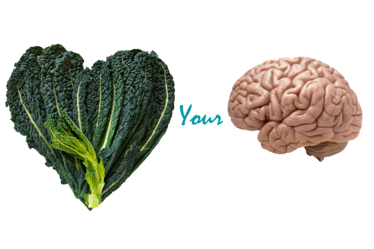 benefits of kale & your brain